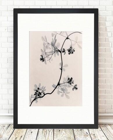 Tablou decorativ Cressida Branch, Tablo center, 24x29 cm, MDF, multicolor