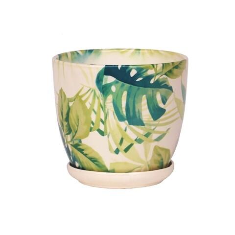 Ghiveci cu farfurie Wenus, Ficus, ceramica, 20 cm, alb/verde
