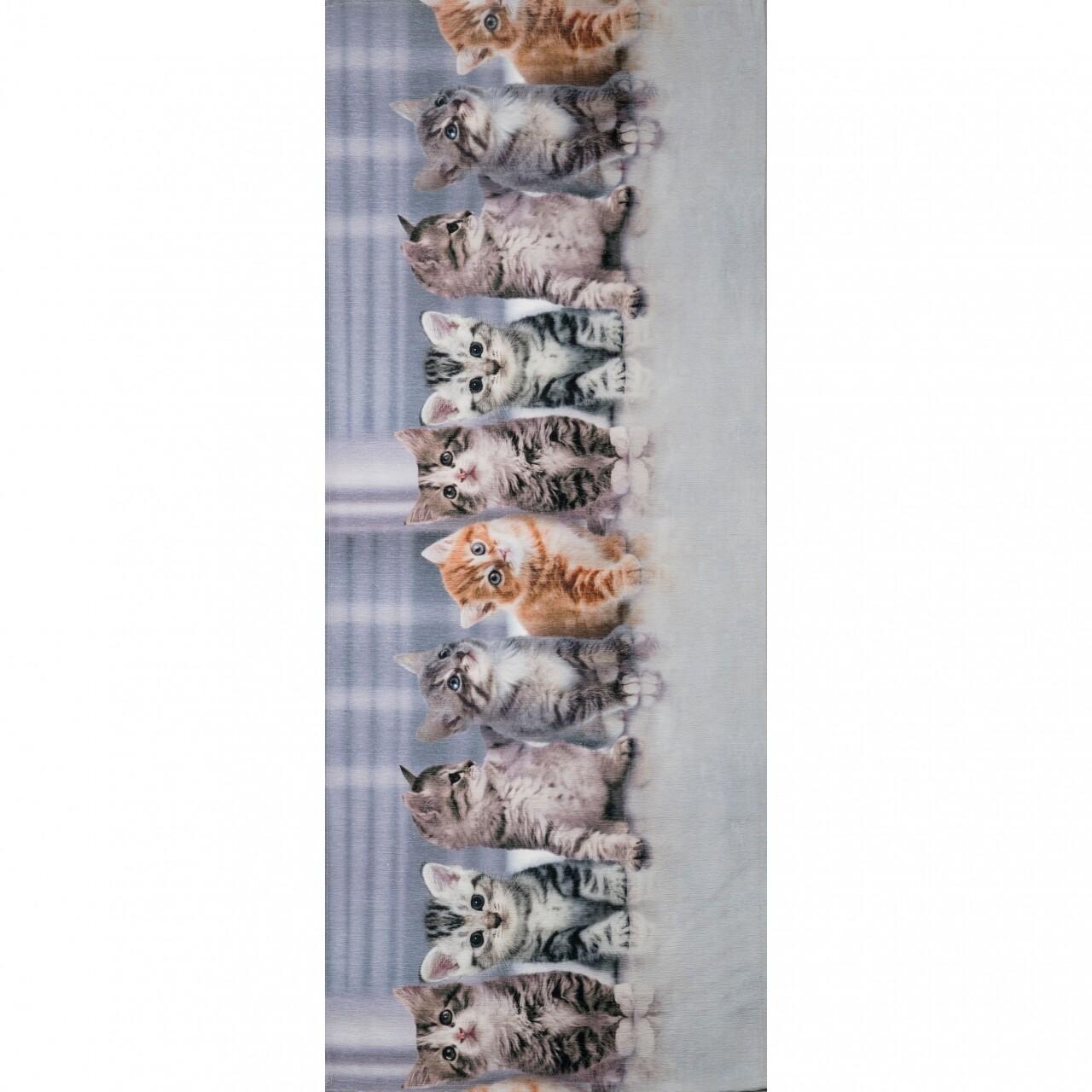 Covor rezistent Webtappeti Gatti 58x115 cm, multicolor
