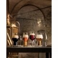 Set 6 pahare bere Birrateque Snifter, Luigi Bormioli, 561 ml, sticla cristalina, transparent